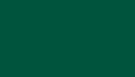 Цвет покрытия RAL 6005